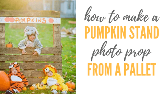 diy pallet pumpkin stand photo fall prop