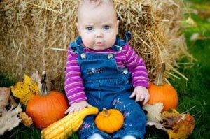 apple orchard corn maze pumpkin patch fall family fun moncton