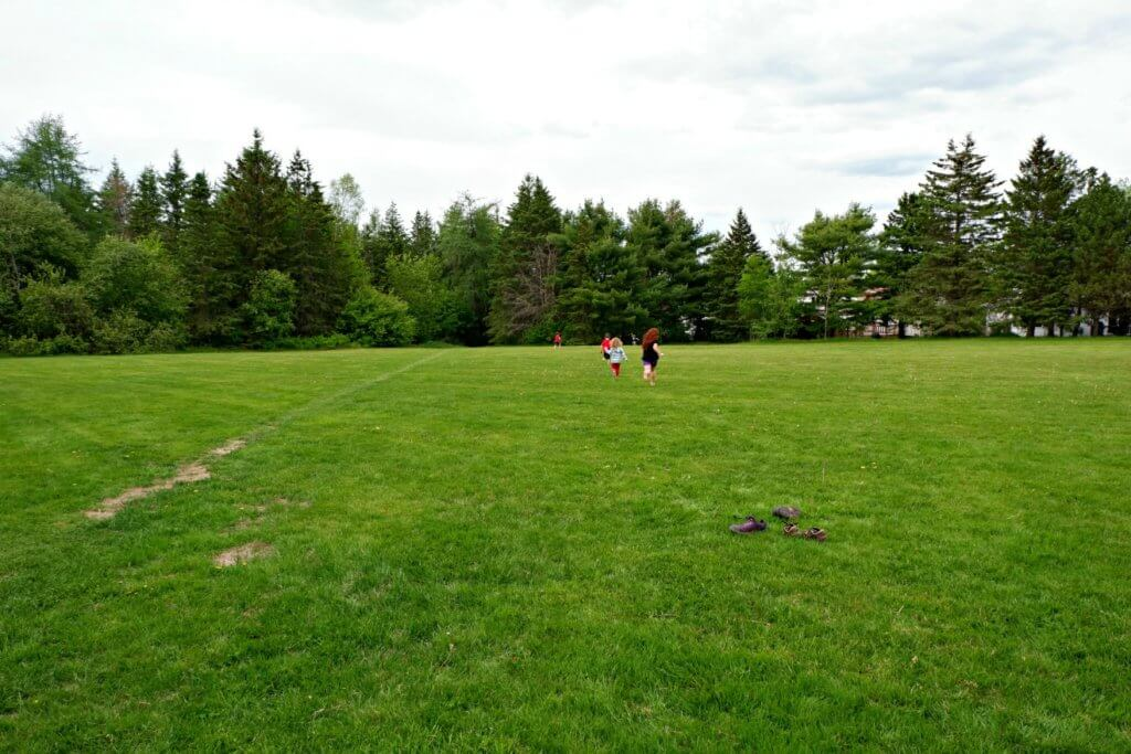 grove hamlet moncton riverview dieppe best playground park pickle planet green space