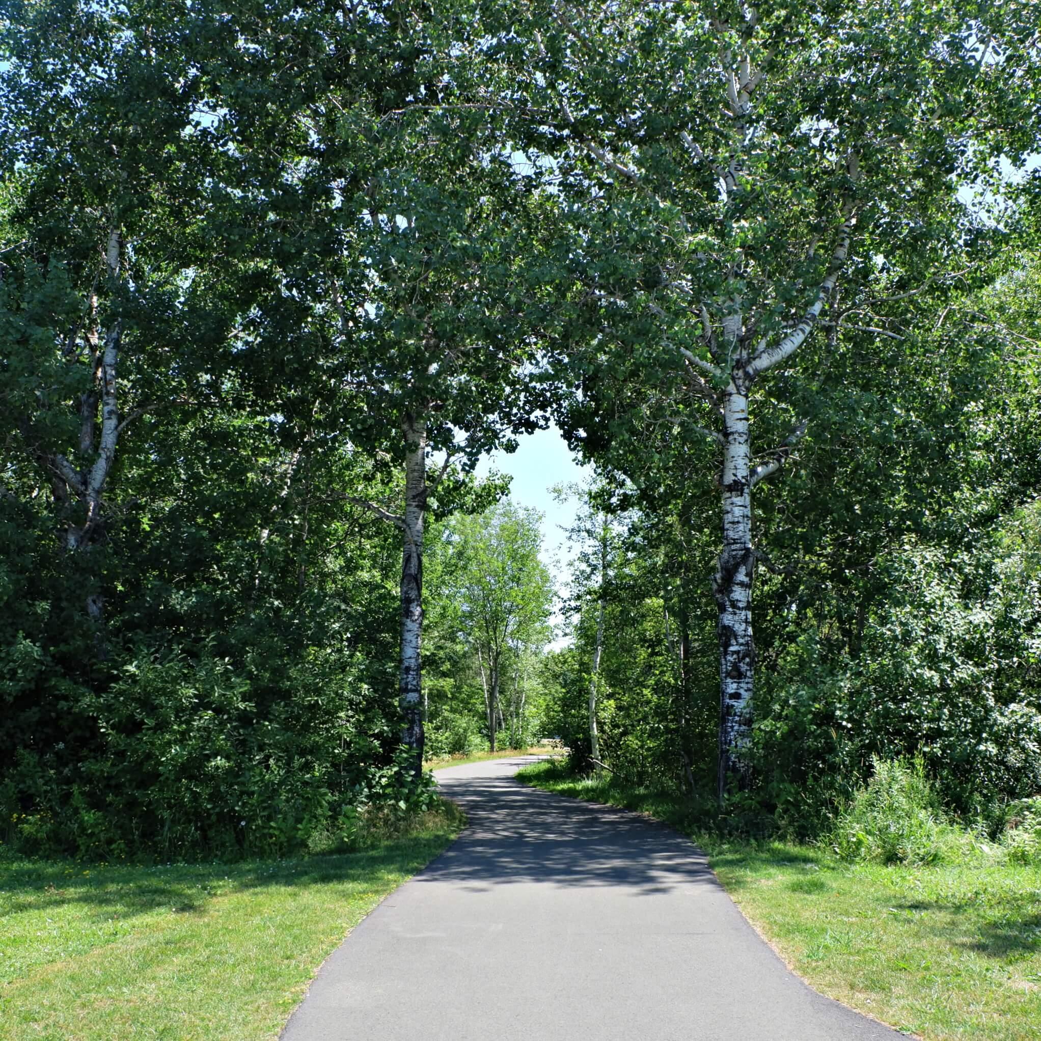 maplehurst park playground moncton riverview dieppe best play new brunswick trail bike biking