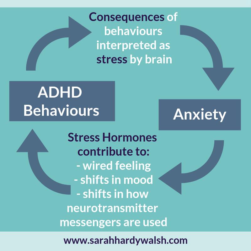 diagram ADHD Anxiety Cycle children symptoms behaviours help sarah hardy walsh
