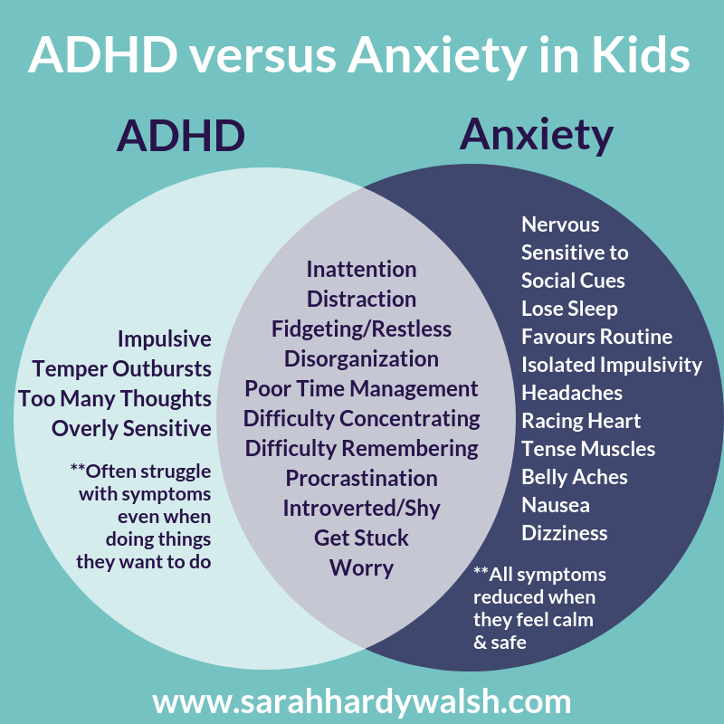 diagram ADHD vs Anxiety symptoms children mental health sarah hardy walsh diagram