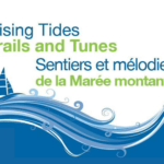 rising tide festival fundy new brunswick august 2020 pickle planet