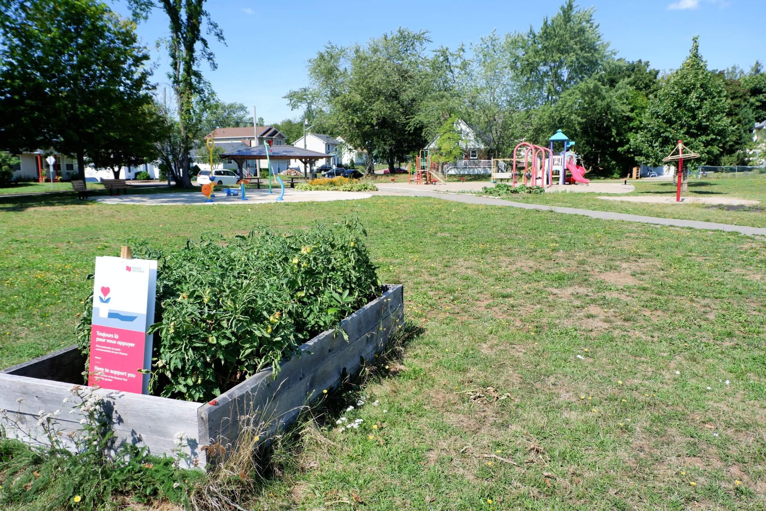Braemar Park Centre Street Playground Moncton Pickle Planet community garden