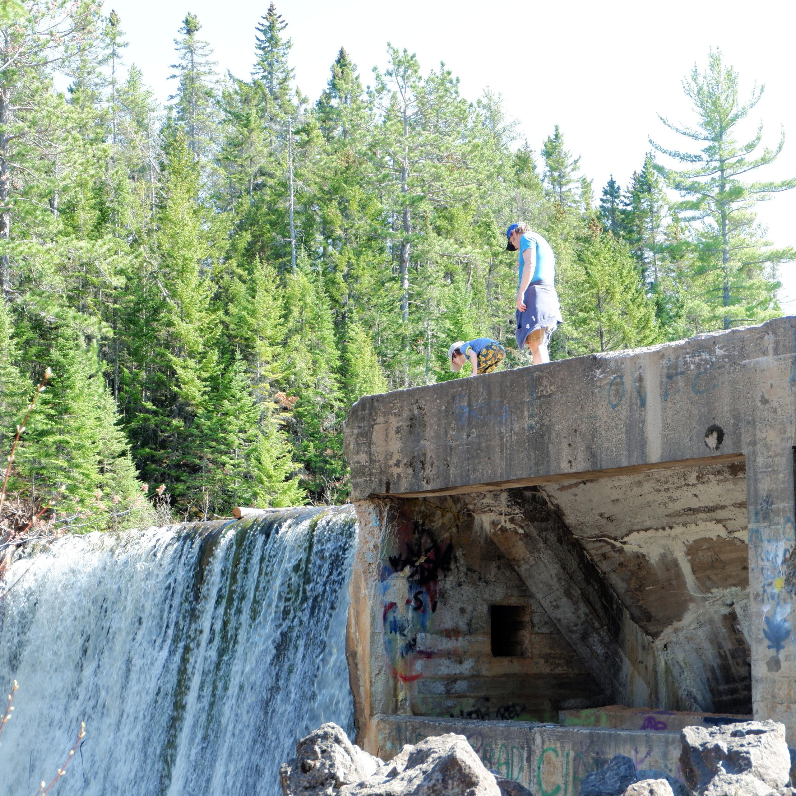 mill creek riverview new brunswick kids family hike walk geocaching sunfest things to do new brunswick pickle planet