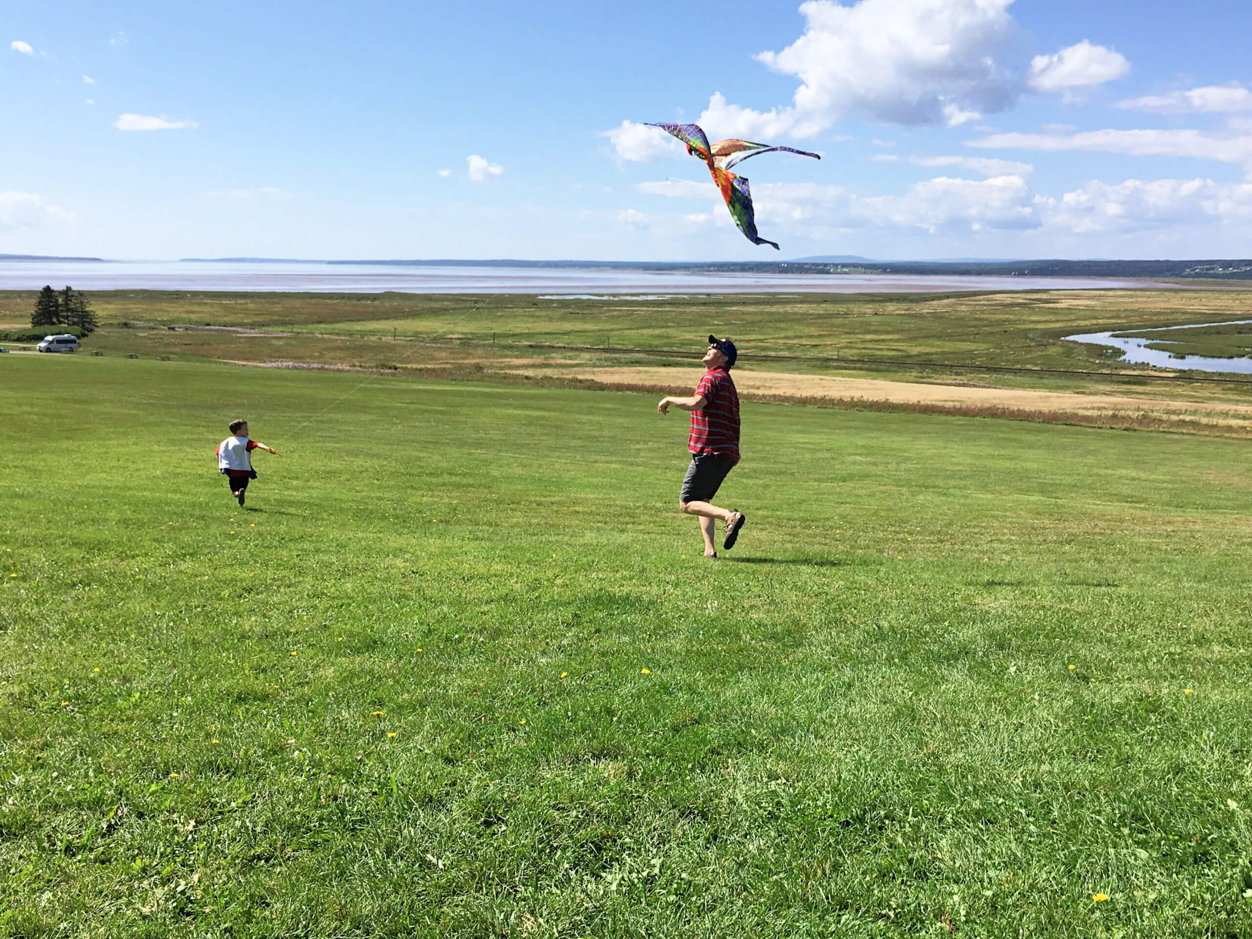 father and son flying a kite at fort beausejour near sackville new brunswick pickle planet