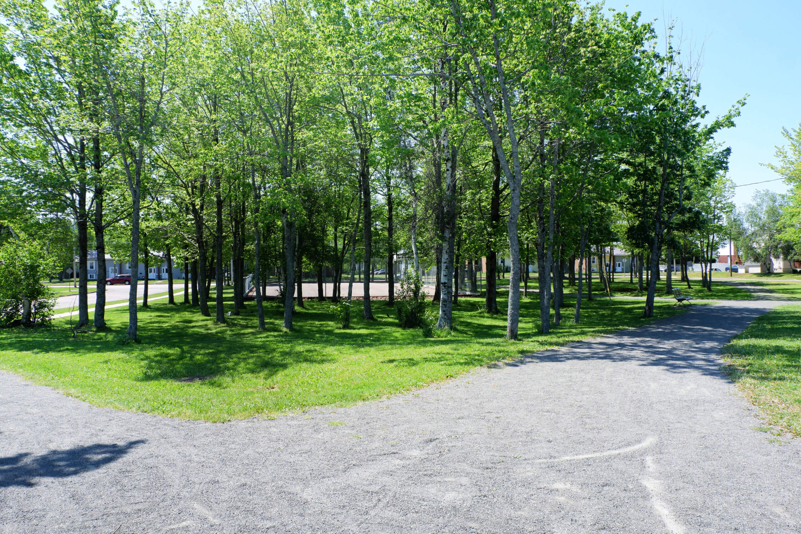shaded basketball court at sumner park in moncton