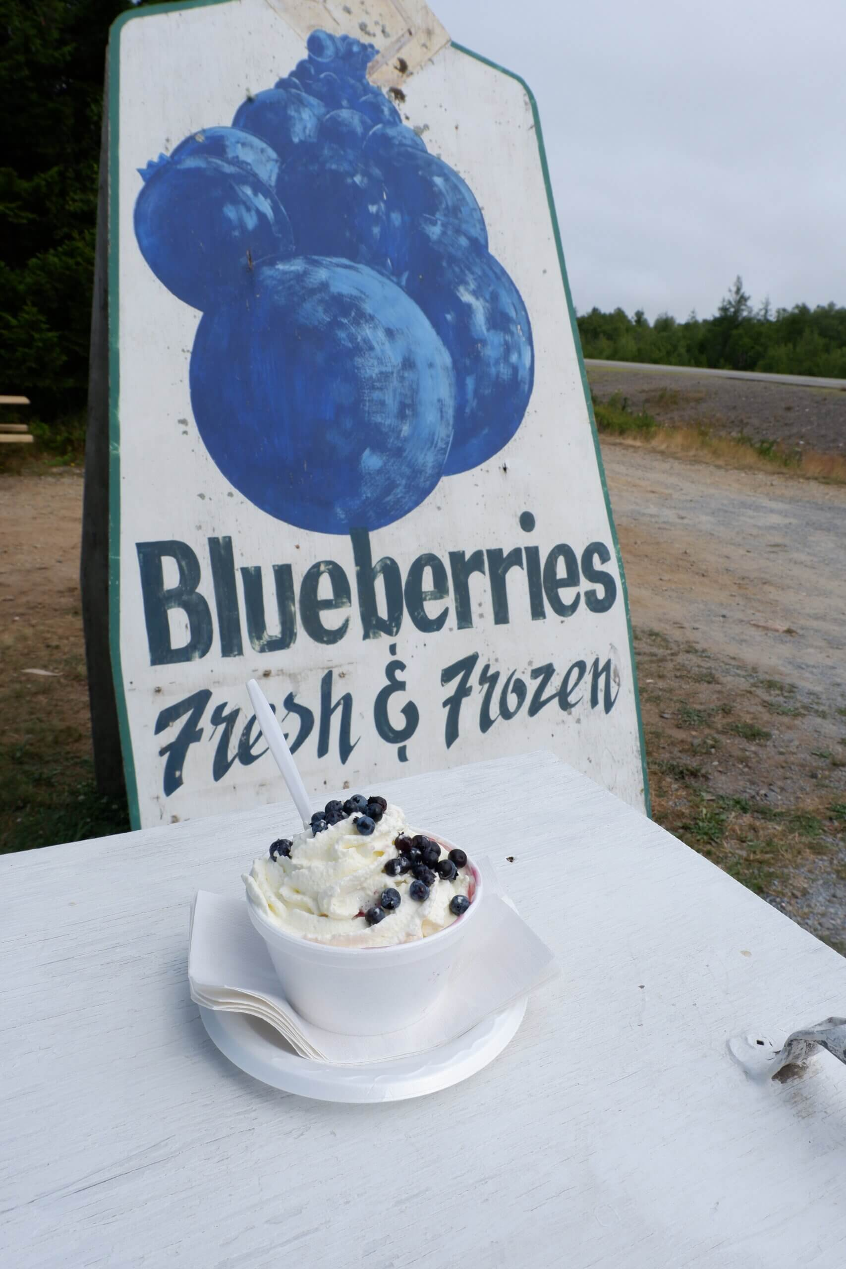 blueberries and whipped cream on a biscuit in front of the mackays wild blueberry sign in pennfield new brunswick