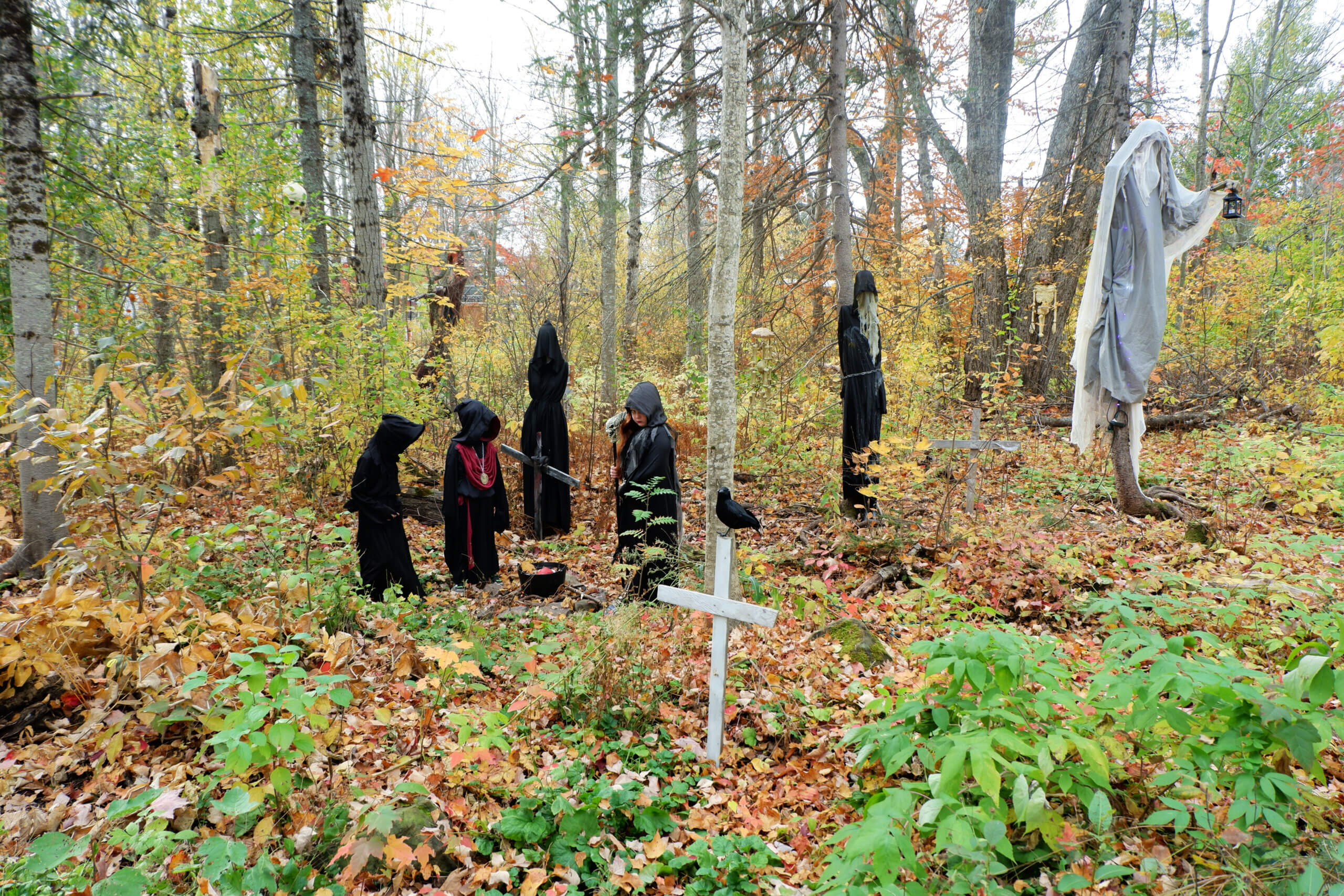 boo at the zoo pickle planet moncton halloween events activities kids family fun